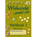 Wiskunde - geniet dit! - Werkbook 3