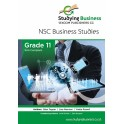 NCS Business Studies Grade 11 - Teacher's Guide (Electronic)