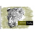 Croxley A4 Sketch Book - 25 pages