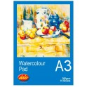 Dala A3 Watercolour Pad 300g 10 Sheet