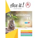 Ace it! Accounting Grade 11