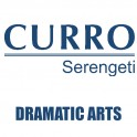 Curro Serengeti Requirements for Dramatic Arts Grade 10 2021