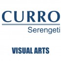 Curro Serengeti Requirements for Visual Arts Grade 10 2021