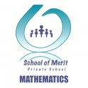 School of Merit Mathematics Pack Grade 10 2021 (Excludes Calculator)